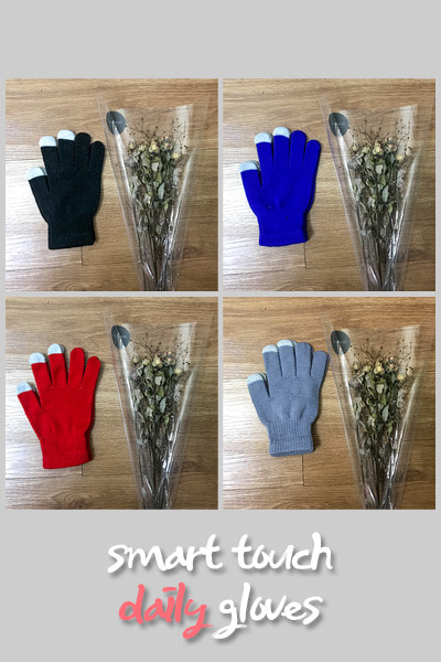 acc1149. smart touch daily gloves [4color]